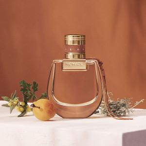 chloe-nomade-absolu-de-parfum-note