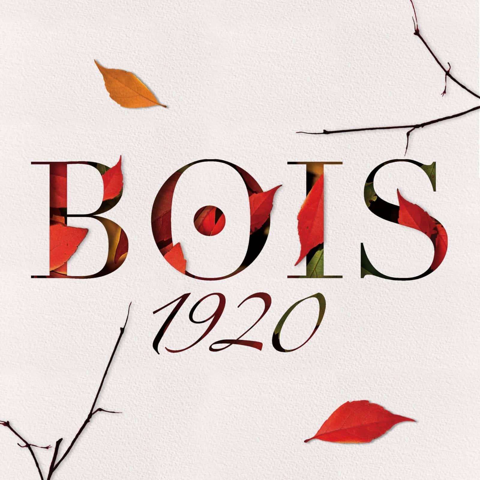 Bois 1920 banner