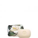 Sapone - Saponificio Artigianale Fiorentino Magnolia